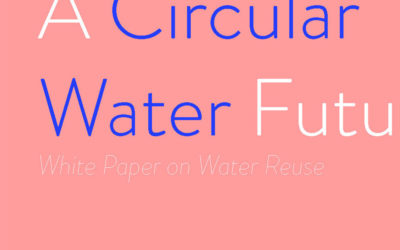 A Circular Water Future: White Paper on Water Reuse