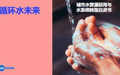 Now available in Chinese: 循环水未来 – 城市水资源回用与水系统转型白皮书